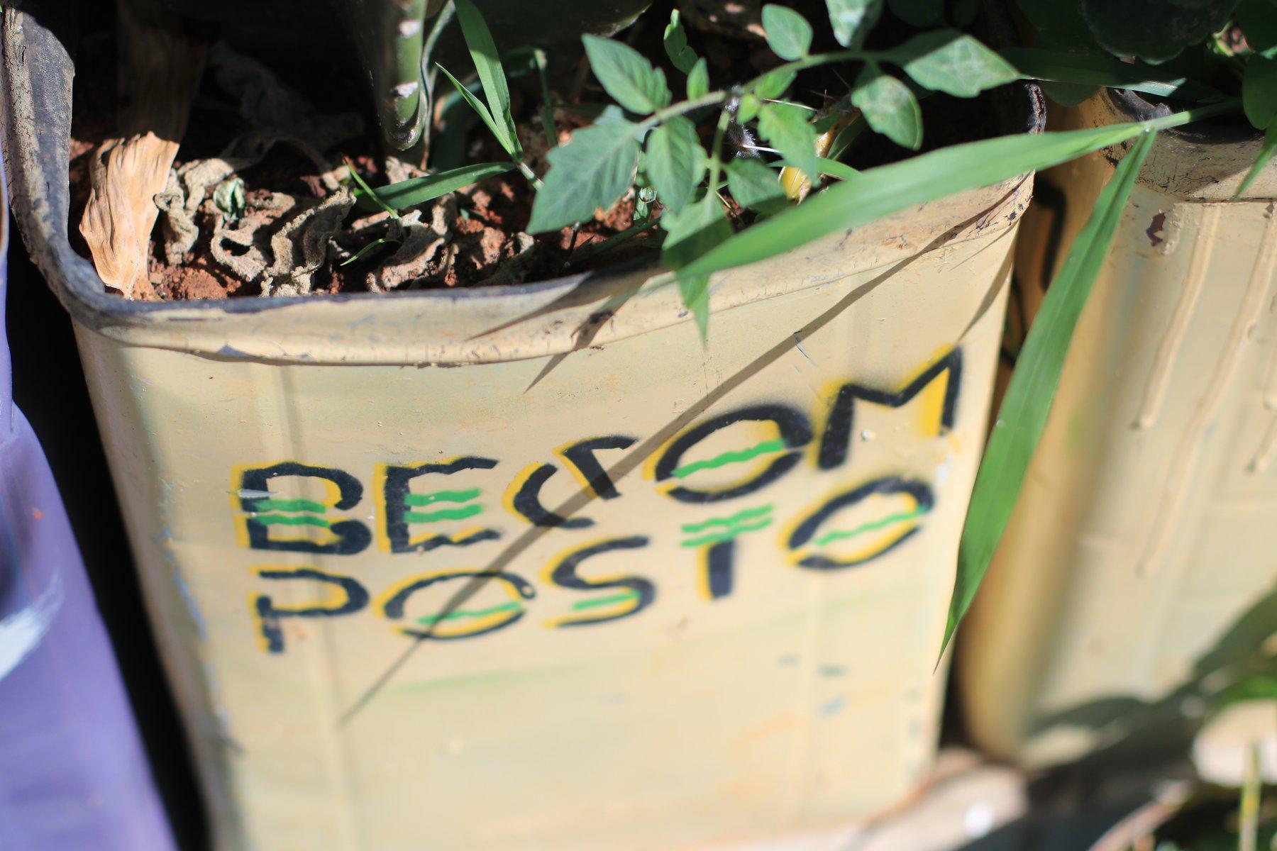 Hortas urbanas desenvolvidas pelo coletivo Becomposto, do movimento MSV. Fotos: Webert da Cruz